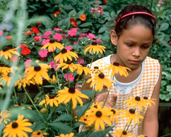 Photograph of a girl in a field with sunflowers
